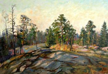 Morning. pines on stones. Loukianov Victor