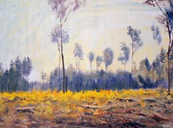Felling in the country, sketch from nature. Malyusova Tatiana