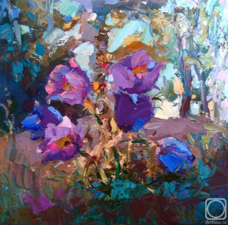 Мишагин Андрей. Первоцветы