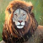 Картины на тему «Львы»