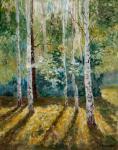 Волосов Владимир. Длинные тени в лесу