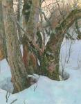 Ранняя весна в яблоневом саду. Чернов Денис