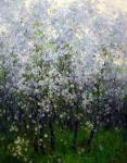 Цвет весны. Савченко Алексей