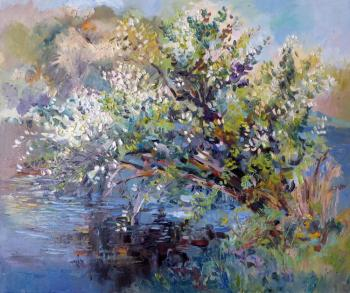 Bird-cherry tree. Berezina Elena