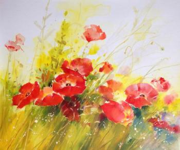 Poppies. Dzhanilyatii Antonio