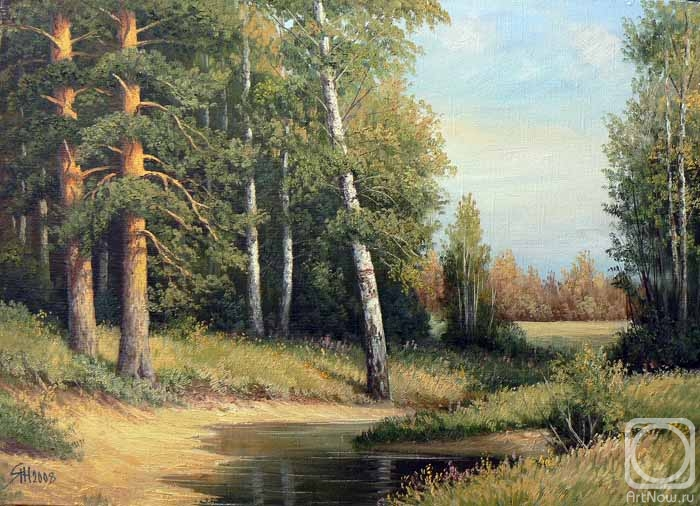 летние пейзажи в лесу,