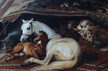 "Copy of a picture E. G. Landseer ""The Arab racers"""