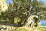 Ефошкин Сергей. Среди древних олив