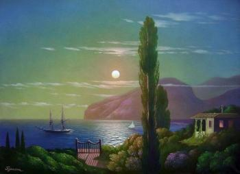 A lunar night in the Crimea. Kulagin Oleg