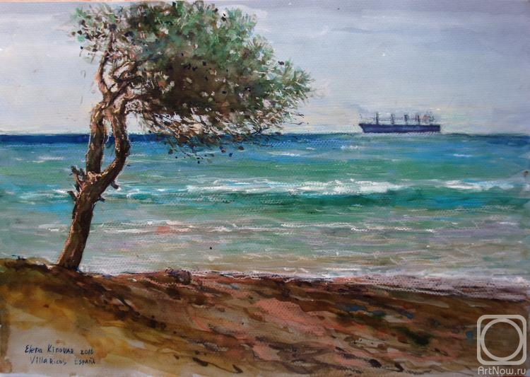 Petrova Elena. A pine tree on a seaside. Spain