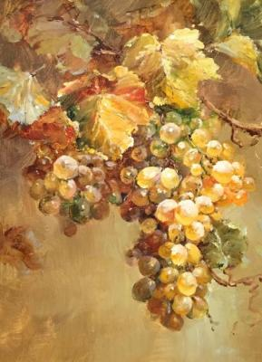 Grapes. Bruno Augusto