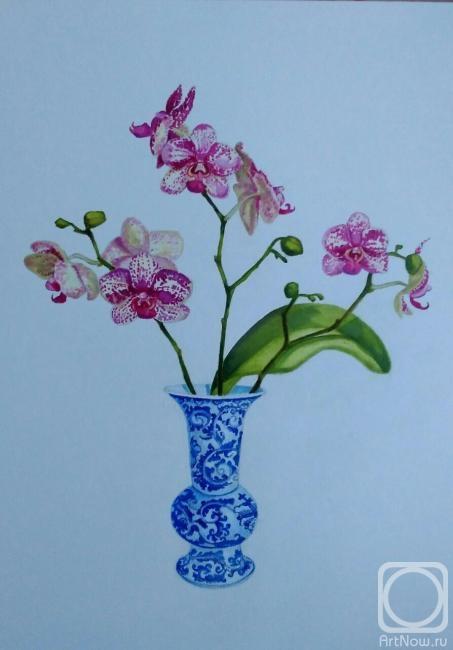 Химич Алла. Орхидея тигровая