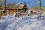 Volya Alexander. Sunny Winter Day