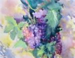 Михальская Екатерина. Виноградная лоза