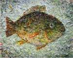 Рыбка. Желнов Николай