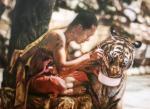 Парий Анна. Тигр с монахом