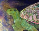 Королевская черепаха