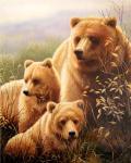 Медвежья семья. Смородинов Руслан