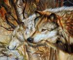 Волки. Бруно Тина