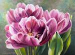 "Картина ""Тюльпаны Блю Даймонд"". Храпкова Светлана"