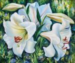 Белой лилии цветы