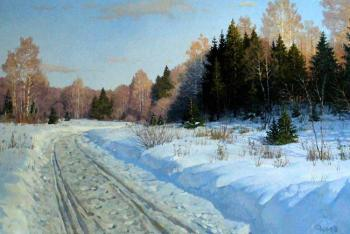 frost and sun day is wonderful. Fyodorov Vladymir