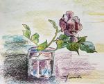 Пантелеева Елена. Роза