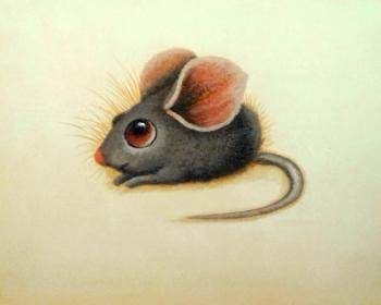 Baby mouse. Bruno Tina Augusto