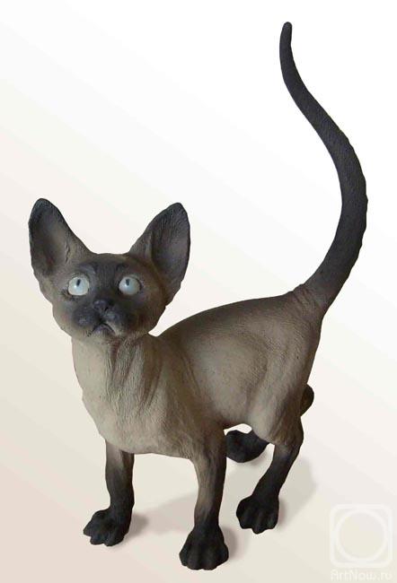 Боровых Вадим. кот