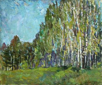 Zhukova Juliya. Birch grove
