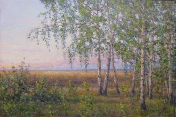 Gaiderov Michail Valentinovich. Summer morning