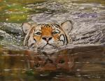 Rakhmatulin Roman. Swimming tiger