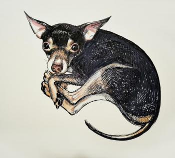 The toy Terrier. Lutokhina Ekaterina