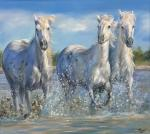 Kogay Zhanna. Three white horses