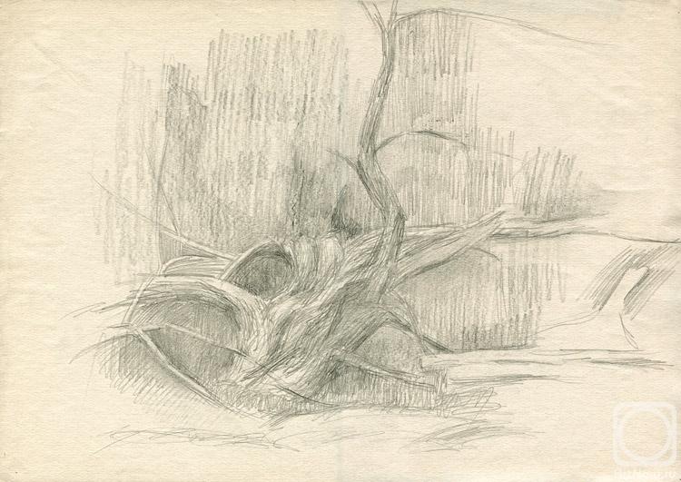 Старая ива над Рожайкой. Картины художника. Юдаев-Рачей Юрий ...