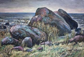 Boulders on the Gulf of Finland
