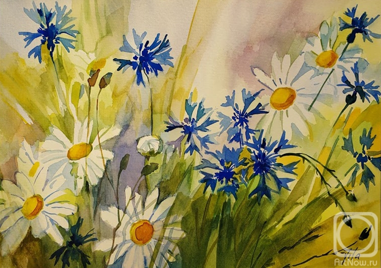 Chizhova Viktoria. Cornflowers and daisies