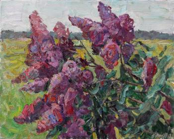 Zhukova Juliya. Branch of lilac