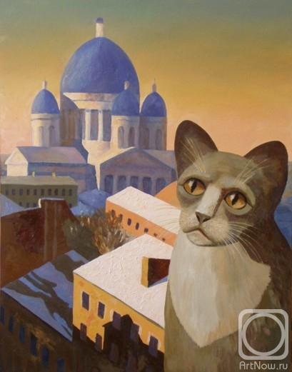 кот, глаза, собор, закат, небо, Петербург