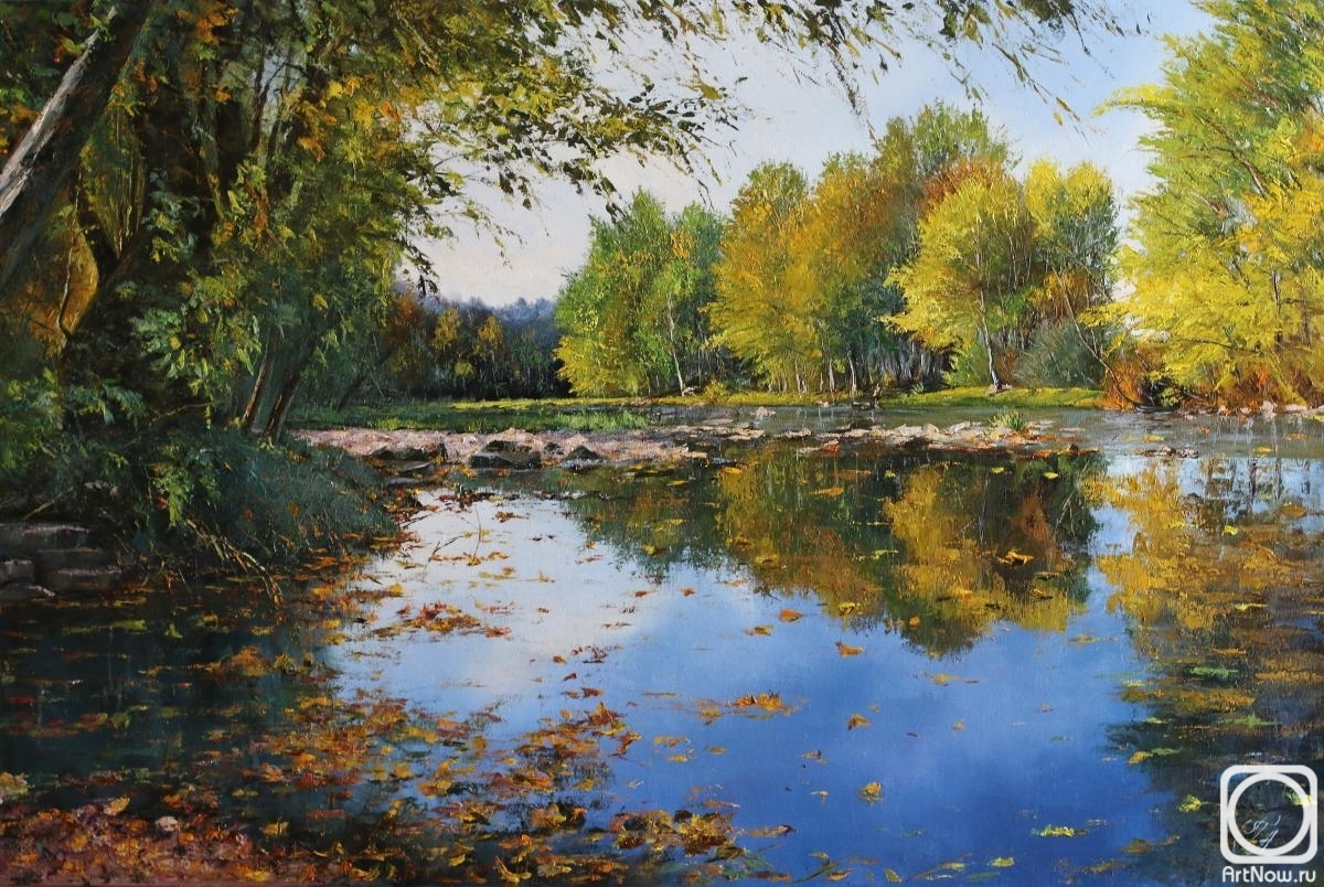 Popov Alexander. Leaves on water