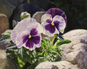 Grechina Anna. Pansies