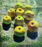 Rudnik Mihkail. Apples