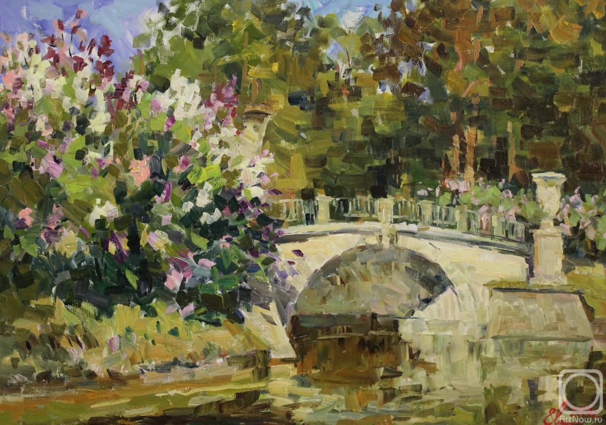 Malykh Evgeny. Pavlovsk Park. The Visconti Bridge