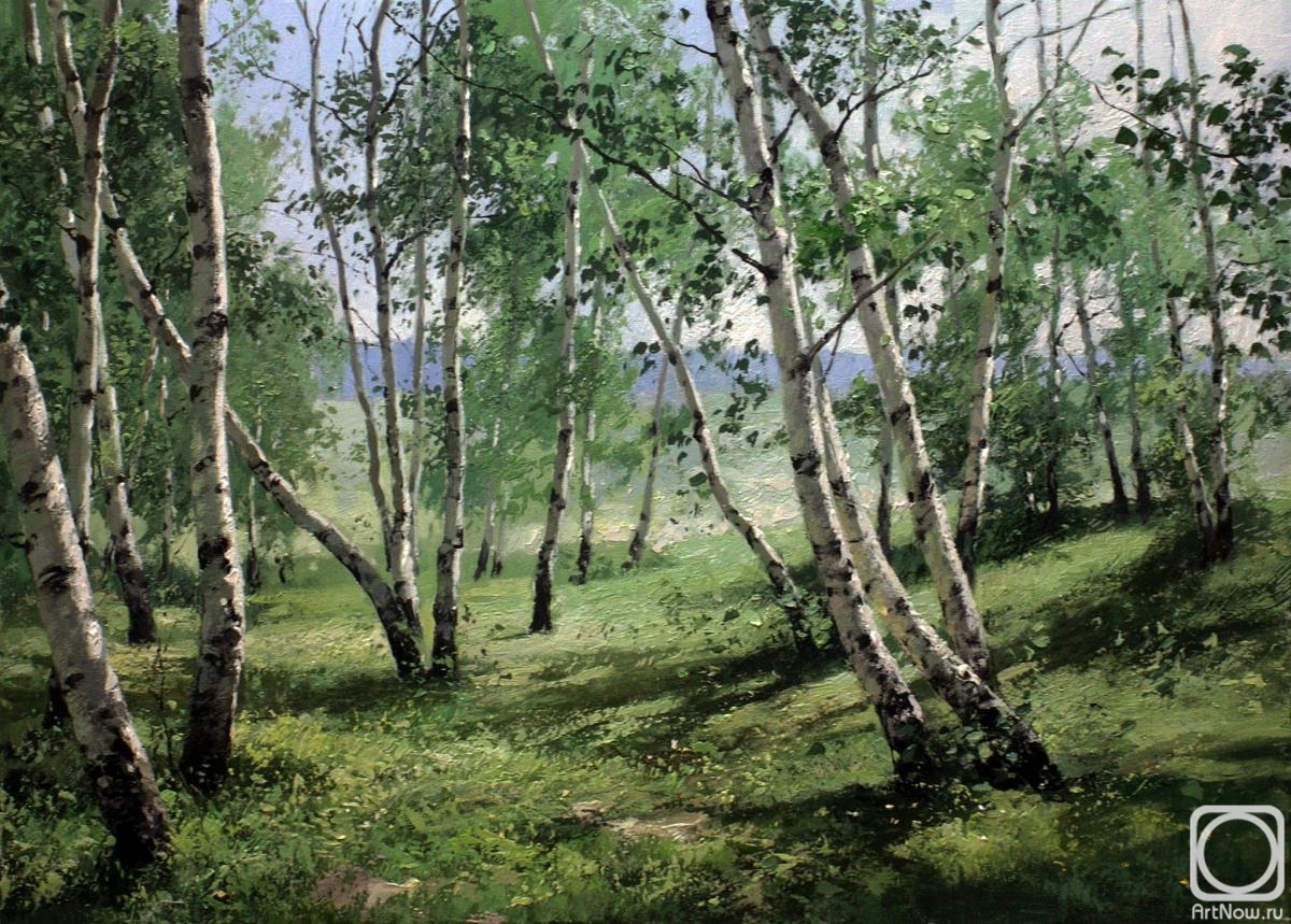 Pryadko Yuriy. Birches on the slope