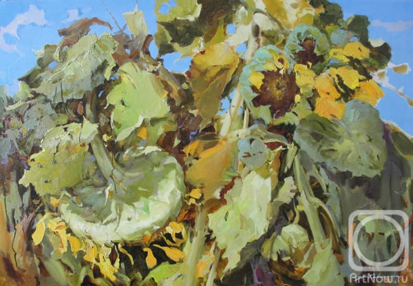 Kovalenko Lina. Sunflowers