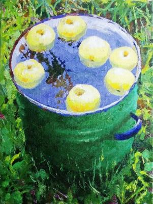 Rudnik Mihkail. Apples on water
