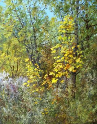 Trying Les your autumn outfit. Dorofeev Sergey
