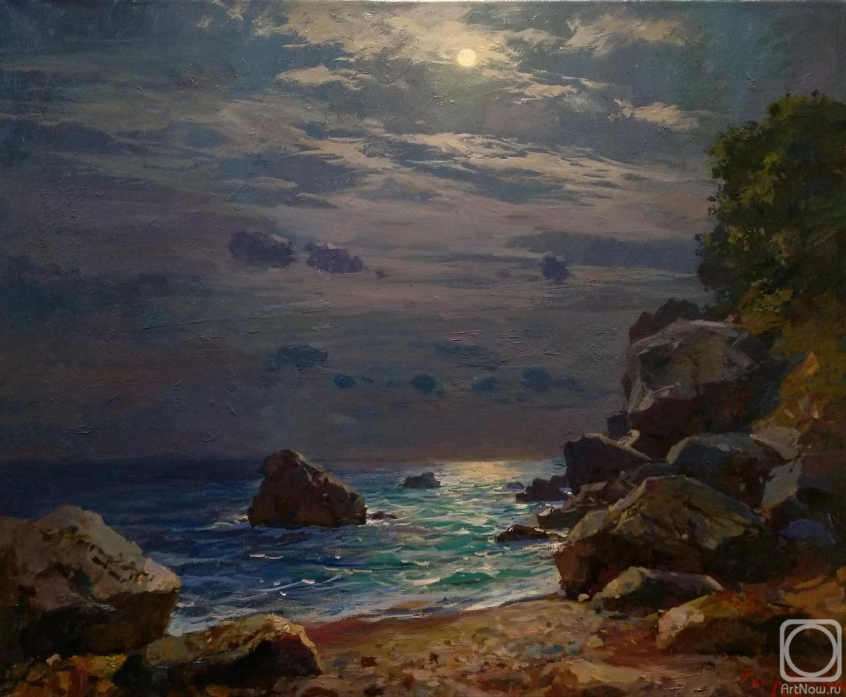 Sviridov Sergey. Moonlit night
