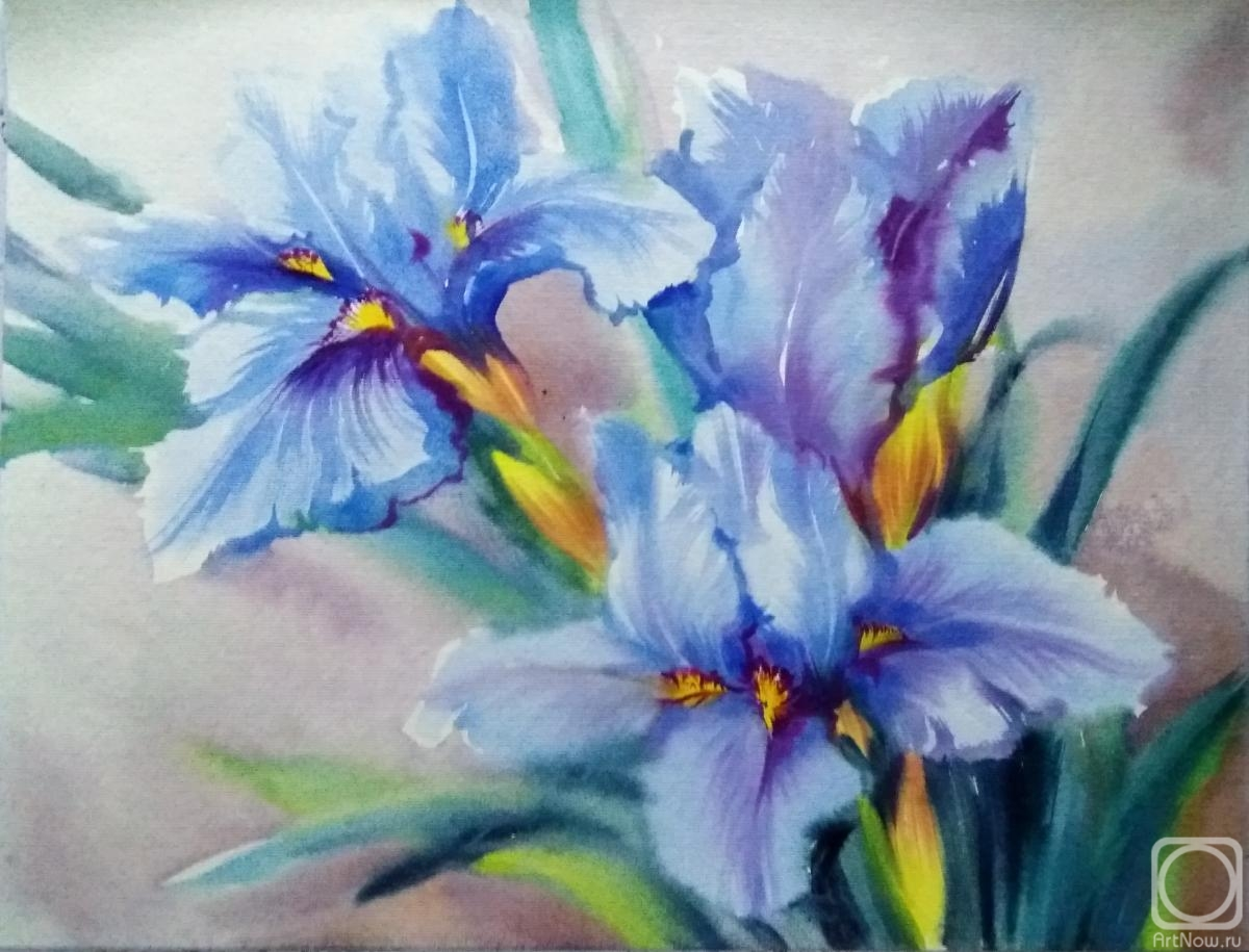 Mikhalskaya Katya. Irises by the water