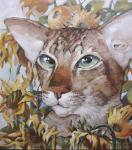 Panina Kira. The cat in the sunflowers